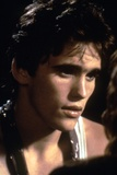 Rumble Fish 1983 Directed by Francis Ford Coppola Matt Dillon Photographic Print