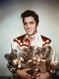 Loving You, Elvis Presley, Directed by Hal Kanter, 1957 Photo