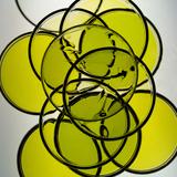 Olive Oils Reprodukcja zdjęcia autor Graeme Montgomery