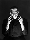 Frankenstein 1931 Directed by James Whale Boris Karloff Poster