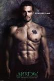 Arrow (Destiny) Poster
