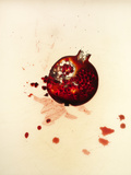 Pomegranate Photographic Print by Graeme Montgomery