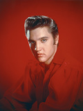 Elvis Presley 1956 Photo