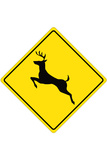 Deer Crossing Sign Plastic Sign Plastic Sign