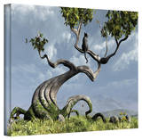 Cynthia Decker 'Sitting Tree' Gallery Wrapped Canvas Stretched Canvas Print by Cynthia Decker