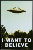 Les X-Files, Je veux y croire en anglais Affiches