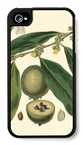 Exotic Foliage II iPhone 4/4S Case by  Vision Studio
