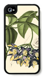 Exotic Foliage III iPhone 4/4S Case by  Vision Studio