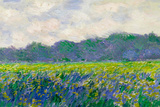 Claude Monet Field of Yellow Irises Plastic Sign Plastic Sign by Claude Monet