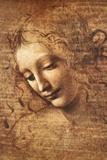 Leonardo Da Vinci (Female Head, La Scapigliata) Plastic Sign Poster Print Wall Sign by  Leonardo da Vinci