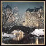Crépuscule à Central Park Posters par Rod Chase