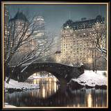 Crepuscolo a Central Park Poster di Rod Chase