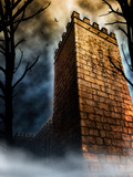 Tower In Dark Forest Photographic Print by Ricardo Demurez