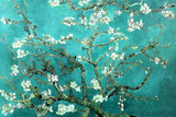 Vincent Van Gogh Turquoise Almond Branches in Bloom, San Remy Plastic Sign Wall Sign by Vincent van Gogh