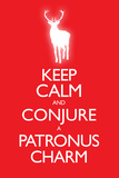 Keep Calm and Conjure a Patronus Charm Carry On Spoof Plastic Sign Znaki plastikowe