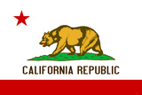 California State Flag Plastic Sign Wall Sign