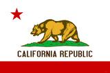 California State Flag Plastic Sign Cartel de pared