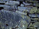 Lichen Encrusted Stone Wall Photographic Print by Green Light Collection