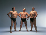 Sumo Wrestlers Japan Photographic Print by Green Light Collection