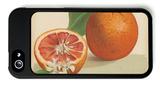 Orange Study I iPhone 5 Case