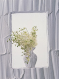 White Plaster Frame with White Plaster Vase in Center Filled with White Flowers Photographic Print by Green Light Collection