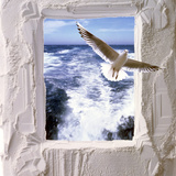Dove Flying Toward Camera Through Plaster Frame with Ocean Waves in Background Photographic Print by Green Light Collection