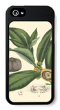 Exotic Foliage I iPhone 5 Case by  Vision Studio