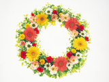 Colorful Wreath Against White Background Photographic Print by Green Light Collection