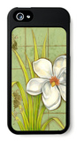 Sugar Magnolia I iPhone 5 Case by Jennifer Goldberger