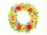 Flower Arrangement Stampa fotografica di Green Light Collection