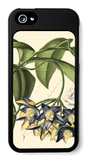 Exotic Foliage III iPhone 5 Case by  Vision Studio
