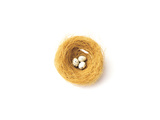 Three Eggs in Nest Illustrated on White Background Photographic Print by Green Light Collection