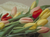 Flowers -Tulips Photographic Print by Green Light Collection