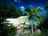 Petite Anse Praslin Seychelles Fotografisk tryk af Green Light Collection