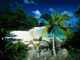 Petite Anse Praslin Seychelles Photographic Print by Green Light Collection