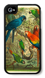 Tropical Birds III iPhone 4/4S Case by  Cassel