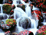 Waterfalls Kyoto Japan Photographic Print by Green Light Collection