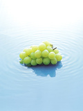 Bunch of Grapes Floating on Water Photographic Print by Green Light Collection