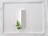 Open White Door with Vine in Floating Plaster Wall Photographic Print by Green Light Collection