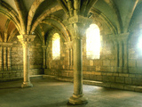 Chapter House Cloisters Photographic Print by Green Light Collection