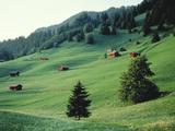 Landscape Liechten Photographic Print by Green Light Collection
