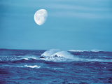 Moon Over Water Waves in Sea Photographic Print by Green Light Collection