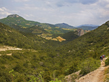 Valley in the Dentelles, Near Gigondas, Provence, France Photographic Print by Green Light Collection