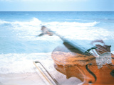 Violin And Seashore Photographic Print by Green Light Collection