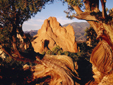 Garden of the Gods CO USA Photographic Print by Green Light Collection