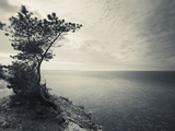 Panga Cliff, Kuressaare, Saaremaa Island, Estonia Photographic Print by Green Light Collection