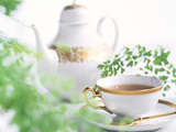 Tea Set with Green Leaves Fotodruck von Green Light Collection