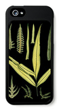 Dramatic Fern I iPhone 5 Case