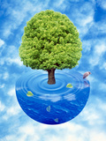 Lush Green Tree Growing From Half Sphere of Blue Water And Ripples Floating in Cloudy Blue Sky Fotografiskt tryck av Green Light Collection