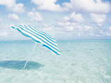 Beach Umbrella in Shallow Water Photographic Print by Green Light Collection